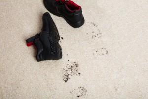 odstranění zašlapaných nečistot z koberce